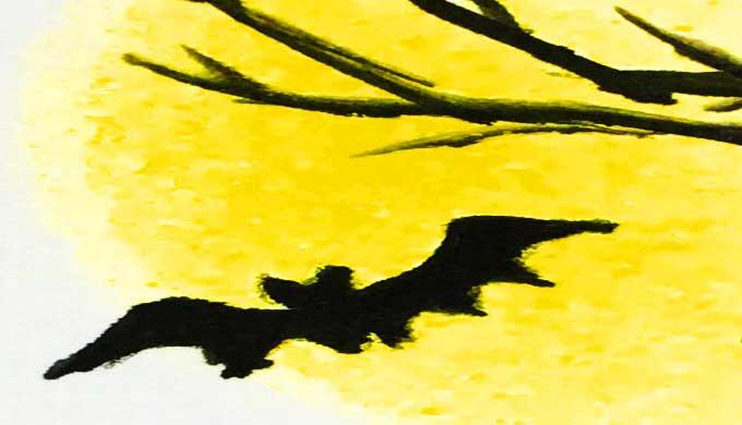 月夜のコウモリ