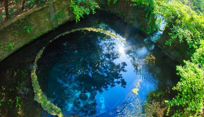 ファンタジーの水場