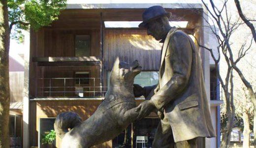 「忠犬ハチ公の真実」飼い主を待ち続けた秋田犬の本当の話。