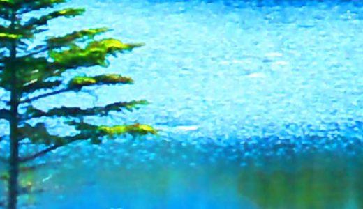 「蒼海に舵をとれ」トマス・キッドシリーズ二作目。紹介と感想