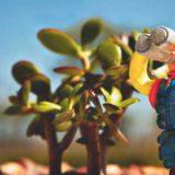 「昔、流行ったおもちゃの話」喋る人形。特撮、アニメグッズ。仮想ペット
