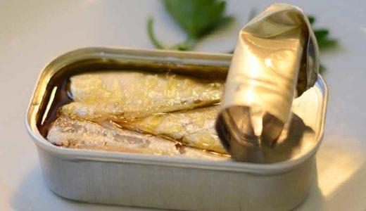 「イワシ」食用としてとても有名。原始的な真骨類か、昔の日本人は知ってたか