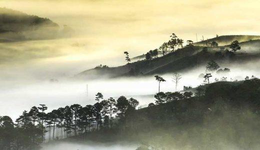 「道教」老子の教えと解釈。タオとは何か、神仙道とはどのようなものか