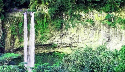 水辺で生き残った太古のワニ、タイガー、恐竜たち「アフリカの湖の怪物たち」