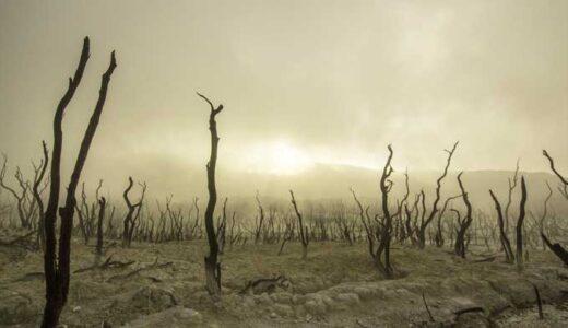 「絶滅」クレードはどのように進化し、そして消滅してきたのか
